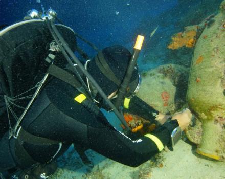 58 αρχαία ναυάγια στον βυθό των Φούρνων